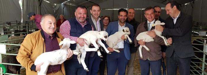 Las autoridades y el presidente de los ganaderos lojeños sostienen ejemplares de corderos. J.Á.