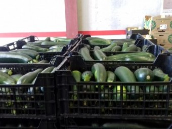 Algunos de los alimentos llegados hoy mismo para su reparto en Loja. FOTO: RAFAEL ÉCIJA.