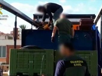 Momento de la detención de un camión con marihuana envasada al vacio
